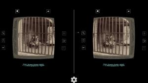 Stereogram for Cardboard 2.03