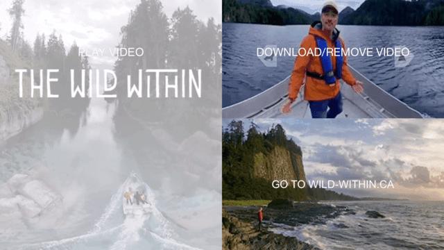 Wild Within-VR
