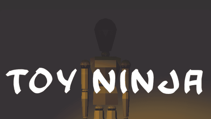 Toy Ninja VR