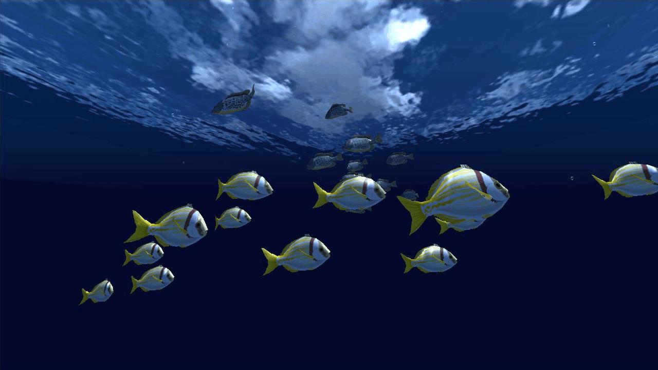 Fish Schooling VR3